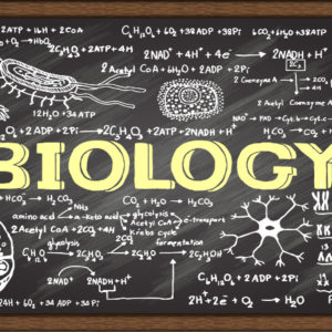 Biology- Private Lessons (7-14)